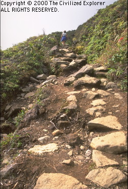 The rugged trail up La Soufriere.